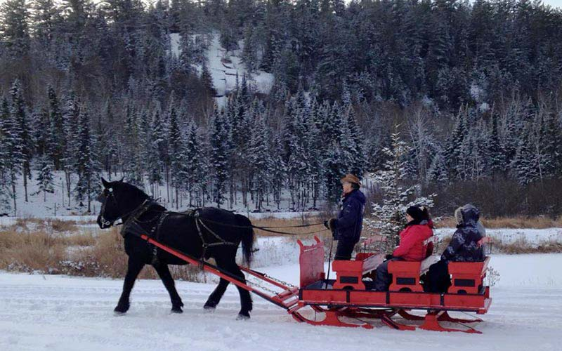 Sleigh ride at Auberge du Vieux-Moulin in Lanaudière
